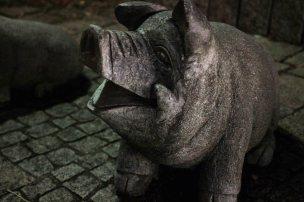 Croisée dans le centre-ville de Mullheim : une sculpture de petit cochon. Pile en face d'une charcuterie... Malin !