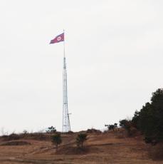 dmz drapeau