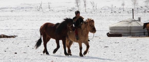 enfant cheval 2