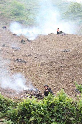 Des fermiers entrain de faire des feux dans un champs... On a pas trop compris