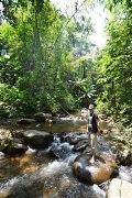 Jungle Manu.